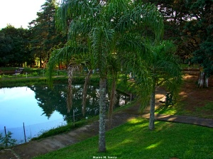 Parque Nova Cascata147